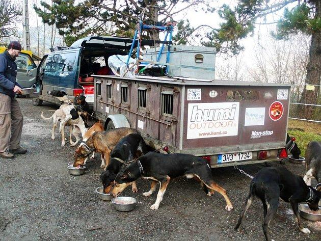 NOVÁ VÝZVA v Rusku je pro Radka Havrdu a jeho psí spřežení dalším impulzem v nepovedené zimě.