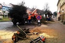 V Hořicích začali s kácením stromů na náměstí Jiřího z Poděbrad.
