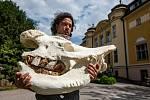 Vzpomínka na Sudána. Safari Park Dvůr Králové bude pracovat s ostatky posledního samce nosorožce bílého severního na světě. Jan Stejskal ukazuje jeho lebku.