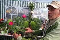 Svět květin 2010
