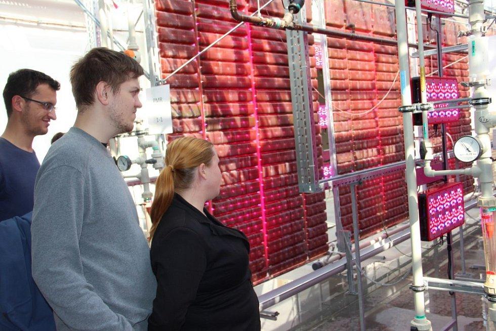 SVĚTOVĚ UNIKÁTNÍ TOVÁRNA, která se zabývá kultivací sladkovodních řas stojí v Mostku u Dvora Králové.