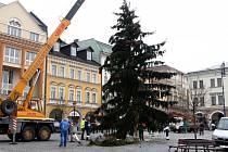 V Trutnově vztyčili vánoční strom