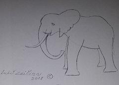 "Skica ""nového"" slona."
