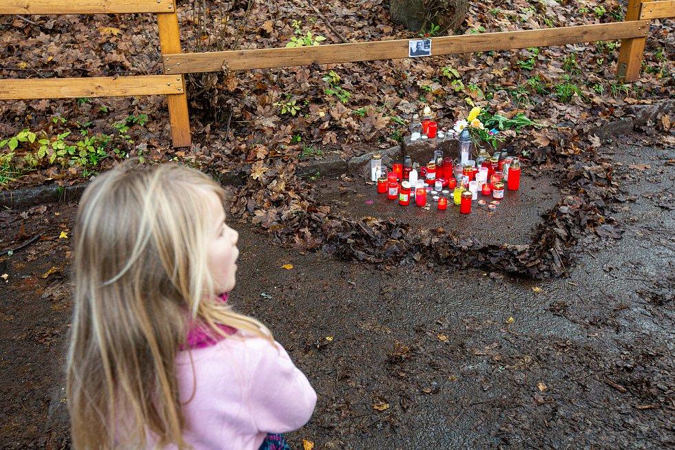 Na Hrádečku u chalupy Václava Havla vzniklo tradiční vzpomínkové místo na listopad 1989.