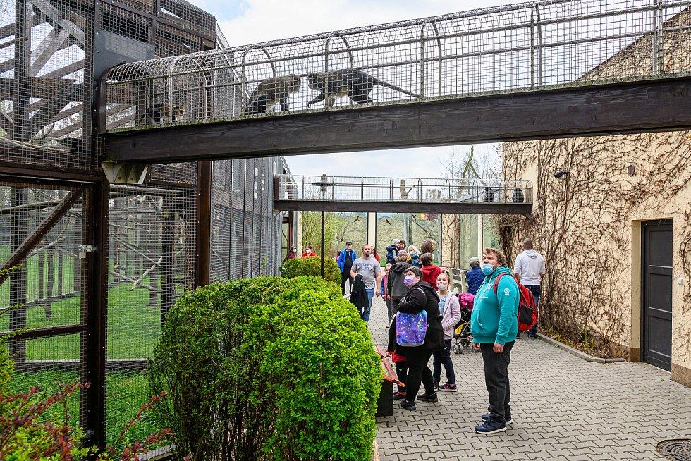 V sobotu dorazilo do Safari Parku Dvůr Králové 3374 lidí.