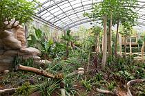 Návštěvníci dvorské zoo si můžou projít nově zrekonstruovaný pavilon Ptačí svět.