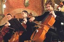 """Na mladé cellisty se """"přišel"""" do kostela podívat i netopýr"""