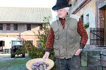Jan Vedral na svých polích v Libštátu pěstuje jedinečné skvosty modré brambory.