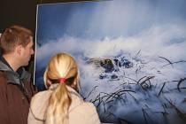 Výstavu nejlepších fotek ze soutěže Czech Nature Photo 2019 ve Vrchlabí zahájila vernisáž.