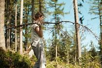 Při desetidenním workcampu jilemnické organizace Mnoho světů dobrovolníci pomáhali s úklidem v lesích po těžbě dřeva.