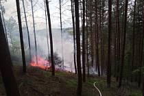 V Batňovicích hořel les, příčina požáru není známa.