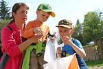 Světový den orientačního běhu, Vrchlabí