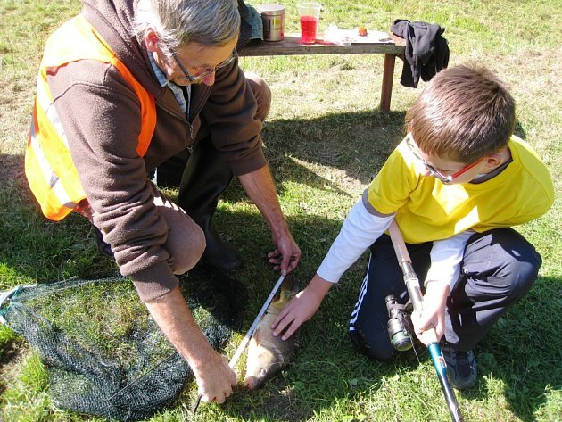 Mladí rybáři s rodiči obklíčili Albeřický rybník
