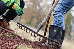 Den za obnovu lesa v Rudníku Bolkově.