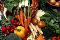 Farmářské trhy ve Zručském dvoře