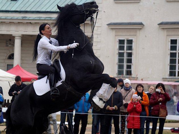 Zámecké jezdecké slavnosti 2016 na Kačině