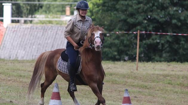 Den s koňmi v Čestíně