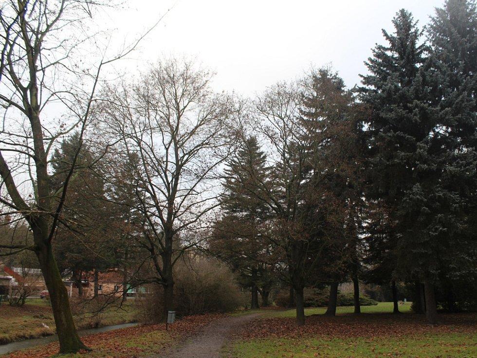 Čáslav získala dotaci na revitalizaci zeleně