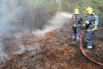 S požárem dvou hektarů lesa bojovalo přes padesát hasičů.