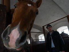 Stáje na statku Dítě a kůň v Miskovicích