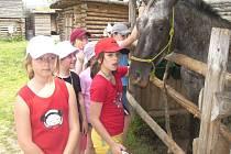 Škola v přírodě. Žáci Základní školy Masarykova v Čáslavi v indiánském městečku.