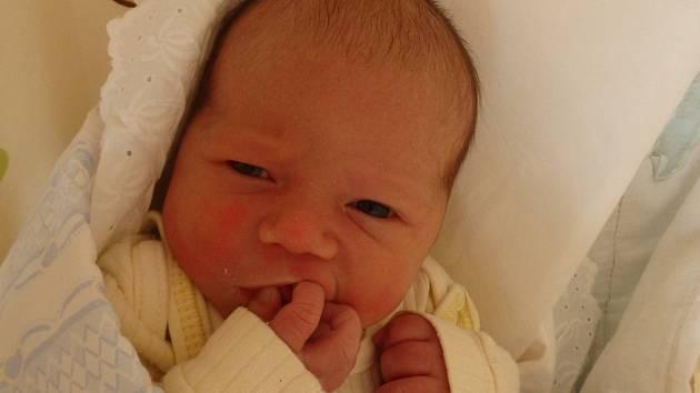 Kryštof Olišar se narodil 5. dubna v Čáslavi. Vážil 3650 gramů a měřil 53 centimetrů. Doma v Ledči nad Sázavou ho přivítali maminka Barbora, tatínek Jan a sestra Terezka.