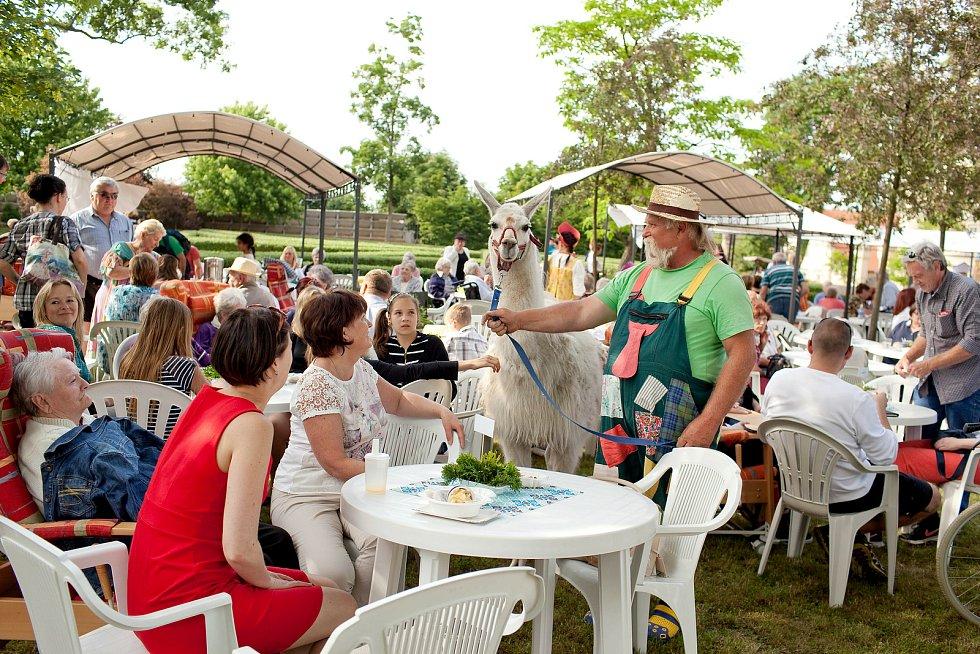 Před pandemií: zahradní slavnost, v rámci níž se setkávají klienti se svými blízkými.