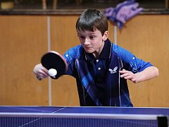 Výchově mladých stolních tenistů se věnují hlavně v Sokolu.
