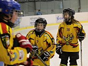 Hokejové mistrovské utkání krajské ligy mladších žáků: SK Sršni Kutná Hora - TJ Stadion Nymburk 2:14 (0:3, 1:3, 1:6).