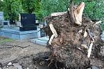 Následky bouřky v noci na čtvrtek 24. června na hřbitově Všech svatých v Kutné Hoře.