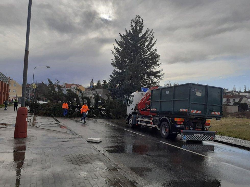 Silným poryvem větru vyvrácený smrk vytvořil překážku na silnici v Lorecké ulici v Kutné Hoře.
