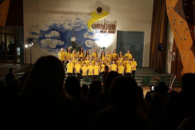 Na koncertě pro Terezku se vybralo přes 19 tisíc korun.