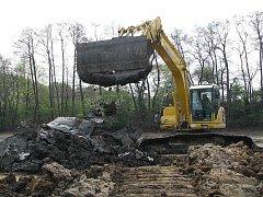 Zřejmě bezkonkurenčně nejnákladnější akcí z celé údržby rybníka bývá jeho odbahnění. V současnosti se na Kutnohorsku odbahňují rybníky Medenice a Turkovec (na snímku), které patří Městským lesům a rybníkům Kutná Hora, spol. s r. o.