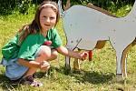 Osmou okresní výstavu králíků, holubů a drůbeže uspořádala o víkendu 4. a 5. července Základní organizace Českého svazu chovatelů ve Staňkovicích, nedaleko Uhlířských Janovic.
