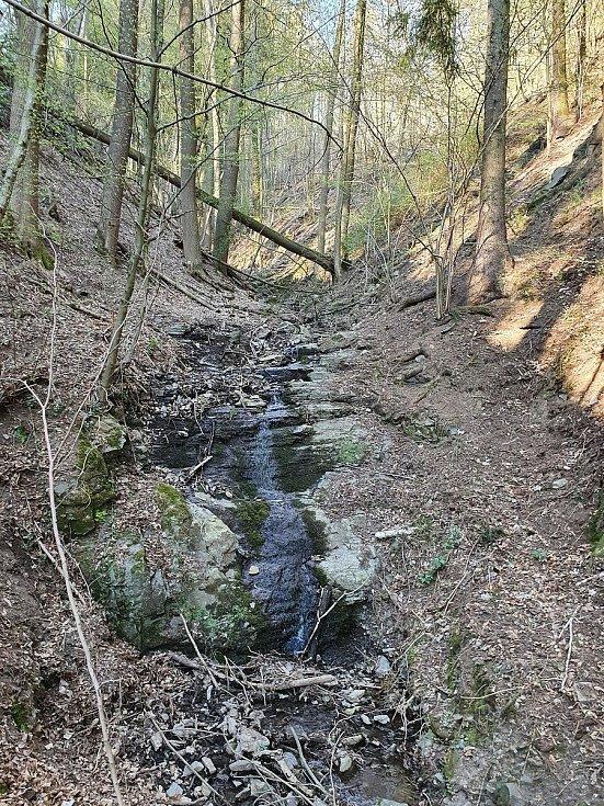 Úžický potok kolem ústí do Sázavy u osady Budín.