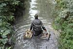 Z vynuceného výlovu rybníku Medenice kvůli nákaze herpes virem.