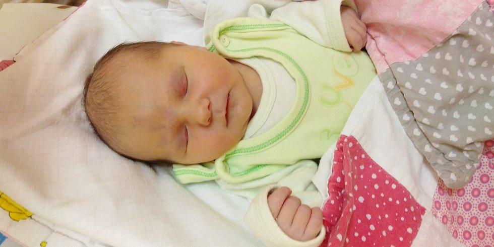 Mia Pleschinger se poprvé na svět podívala 11. ledna 2021 ve 14. 57 hodin v čáslavské porodnici. Pyšnila se porodní váhou 3800 gramů a délkou 52 centimetrů. Doma v Kutné Hoře se z ní těší maminka Renata a tatínek Jiří.