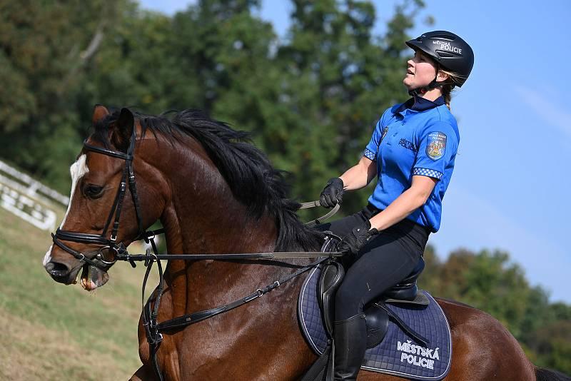 Z jezdeckých slavností Koně na Kačině 2021.