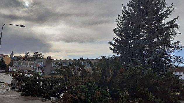 Silným poryvem větru vyvrácený smrk v Lorecké ulici v Kutné Hoře