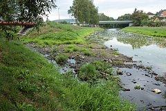 V řece Sázavě je nebývale nízká hladina vody