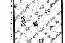 Šachy diagram.