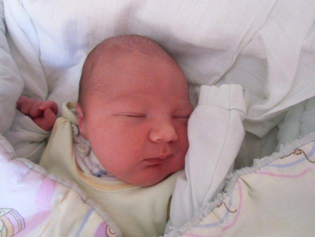 Tobiáš Pánek se narodil 4. června v Čáslavi. Vážil 3950 gramů a měřil 51 centimetrů. Doma v Kolíně ho přivítali maminka Gabriela, tatínek Pavel a bratr Štěpán.