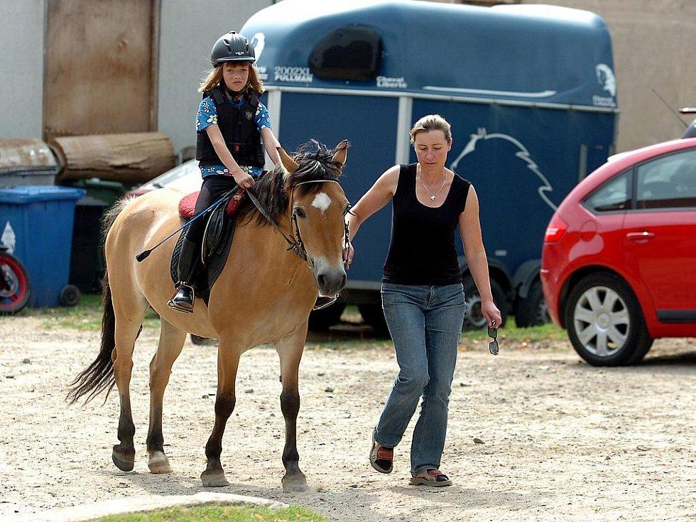 Léto na koních, Dítě a kůň - sdružení pro hipoterepii, Miskovice