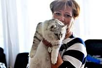 V kulturním domě Lorec se uskutečnila výstava koček.