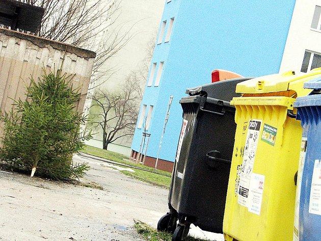 Jak vypadají ulice v novém roce. Někde leží stromky, jinde odpadky.