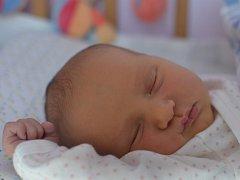 Tereza Kapičková se narodila 31. července v Čáslavi. Vážila 3380 gramů a měřila 49 centimetrů. Doma v Malešově bydlí s maminkou Zuzanou, tatínkem Alešem a bráškou Aleškem.