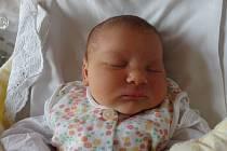 Žaneta Štrosmajerová se narodila 21. října v Čáslavi. Vážila 3480 gramů a měřila 50 centimetrů. Doma v Čáslavi ji přivítali maminka Iva, tatínek Ondřej a bratr Jáchym.