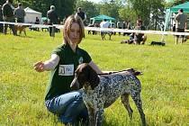 Tradiční oblastní výstava psů všech plemen se konala v zámeckém parku na Kačině.