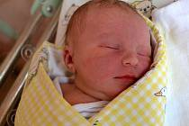 Darina Kršňáková se narodila 13. února v Kolíně. Měřila 51 centimetrů a vážila 3490 gramů. Maminka Mária a tatínek Radek si ji odvezli do Kutné Hory.