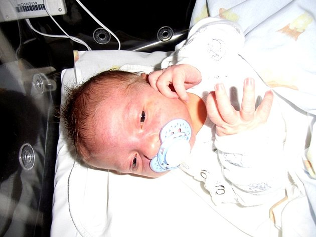 Ondřej Svoboda se narodil 8. srpna v Čáslavi. Vážil 3990 gramů a měřil 52 centimetrů. Doma v Hlízově ho přivítali maminka Kateřina a tatínek David.